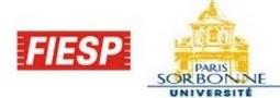 Fiesp e Sorbonne firmam parceria